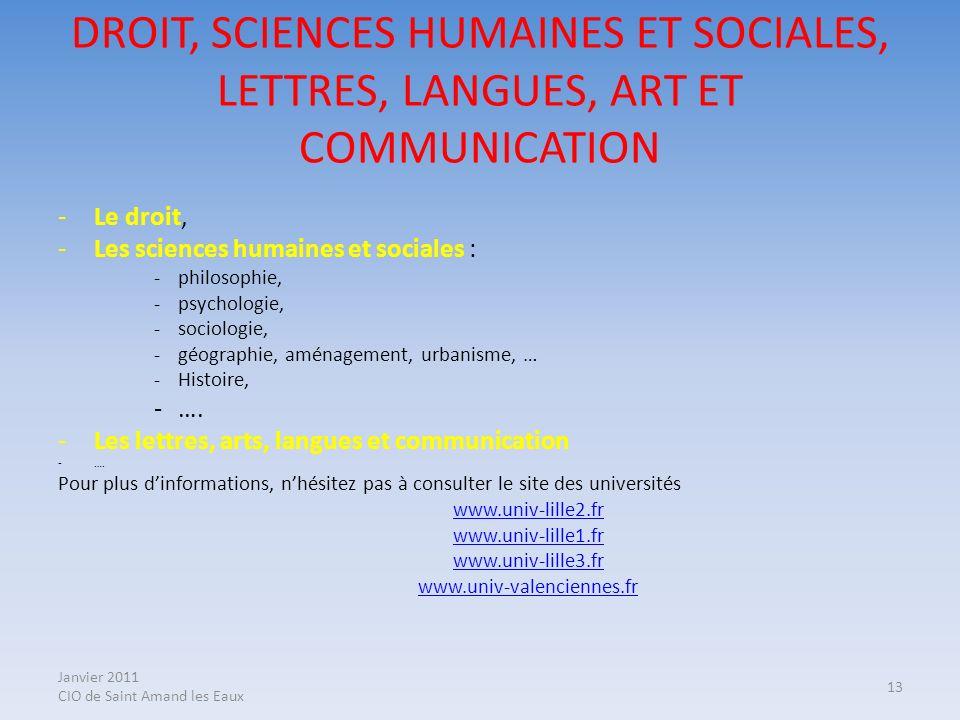 Janvier 2011 CIO de Saint Amand les Eaux 13 DROIT, SCIENCES HUMAINES ET SOCIALES, LETTRES, LANGUES, ART ET COMMUNICATION -Le droit, -Les sciences huma