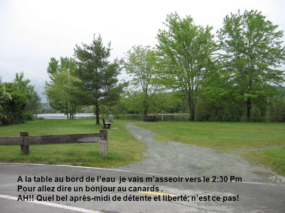 Pour terminer ma randonnée, je me rend a un autre petit parc sur la rue Hertel. Ont peu si rendre en passant sous le pont Jacques-Cartier en longeant
