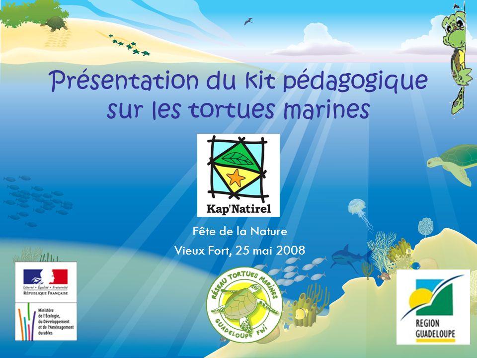 Présentation du kit pédagogique sur les tortues marines Fête de la Nature Vieux Fort, 25 mai 2008