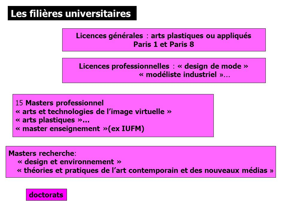 Les filières universitaires doctorats Licences générales : arts plastiques ou appliqués Paris 1 et Paris 8 Licences professionnelles : « design de mod