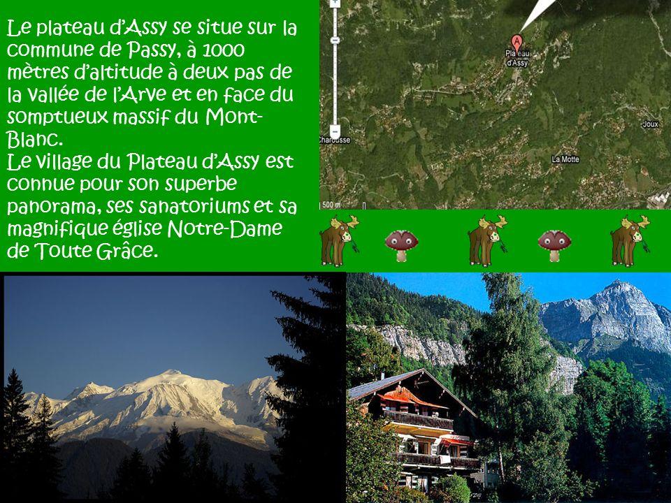 Le plateau dAssy se situe sur la commune de Passy, à 1000 mètres daltitude à deux pas de la vallée de lArve et en face du somptueux massif du Mont- Bl