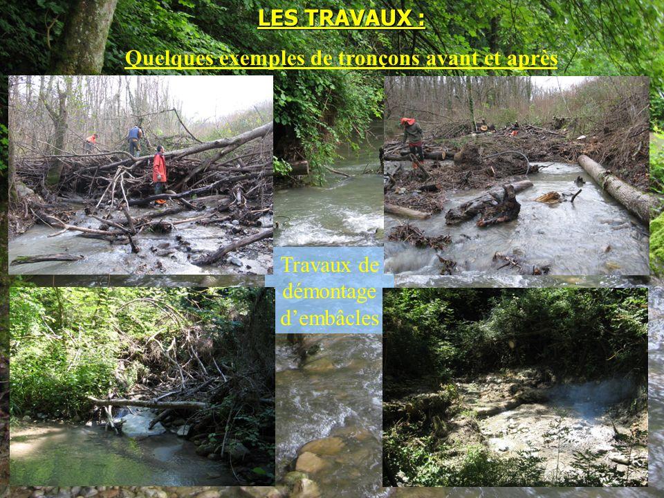 Travaux de démontage dembâcles LES TRAVAUX : Quelques exemples de tronçons avant et après