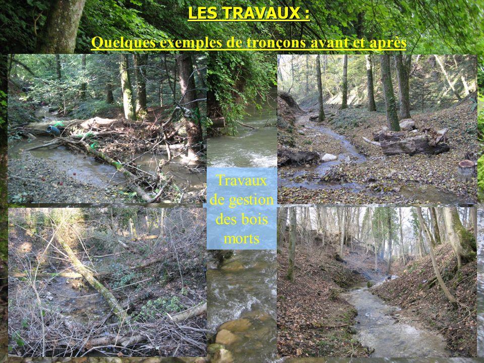 Travaux de gestion des bois morts LES TRAVAUX : Quelques exemples de tronçons avant et après