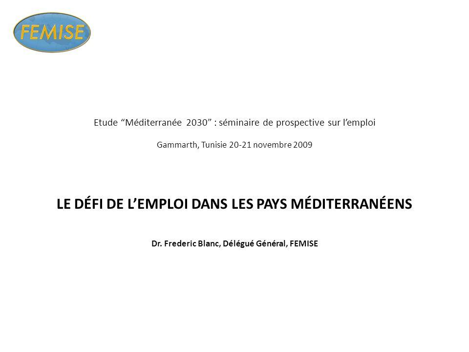 Etude Méditerranée 2030 : séminaire de prospective sur lemploi Gammarth, Tunisie 20-21 novembre 2009 LE DÉFI DE LEMPLOI DANS LES PAYS MÉDITERRANÉENS Dr.