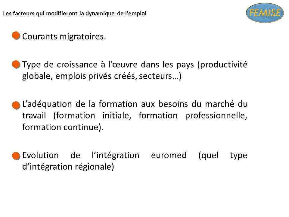 Les facteurs qui modifieront la dynamique de lemploi Courants migratoires.