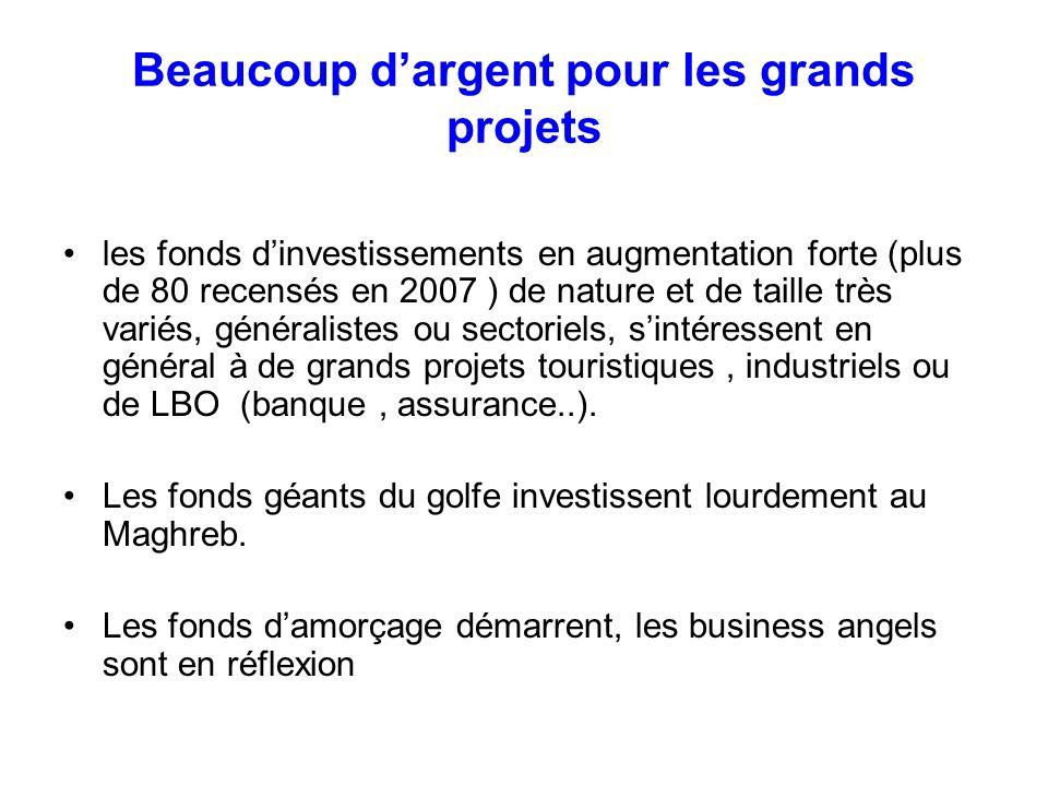 Beaucoup dargent pour les grands projets les fonds dinvestissements en augmentation forte (plus de 80 recensés en 2007 ) de nature et de taille très v