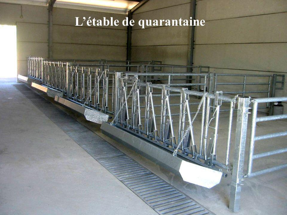 Létable de quarantaine