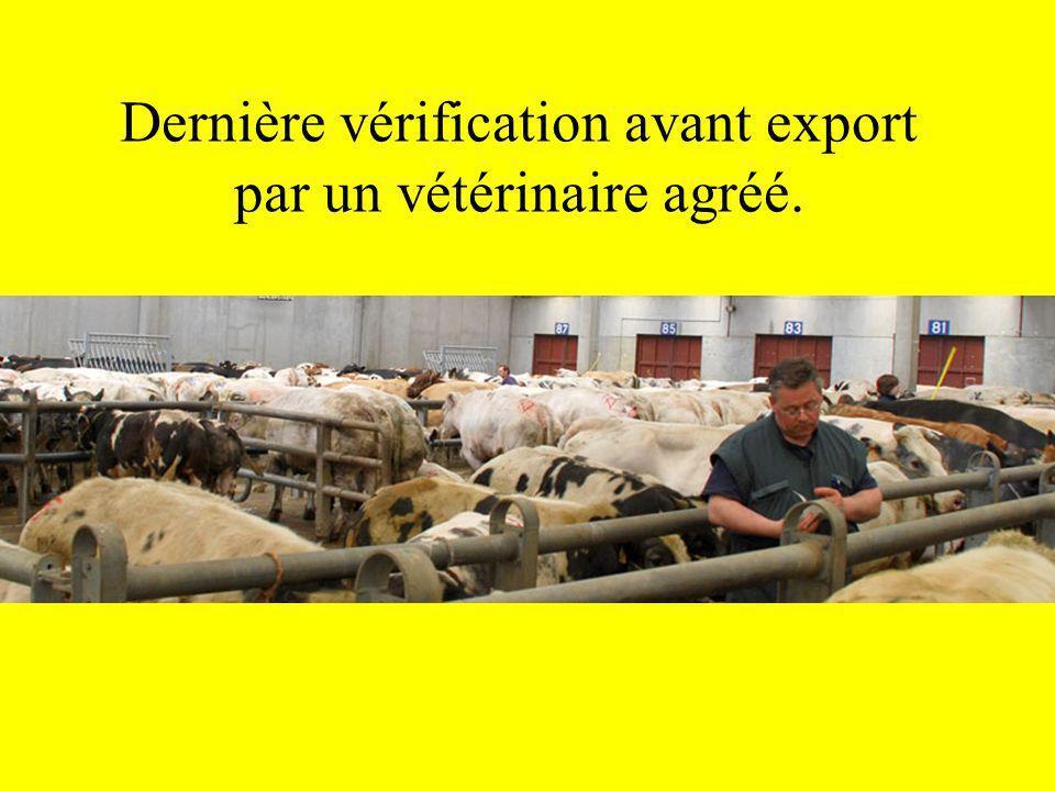 Dernière vérification avant export par un vétérinaire agréé.