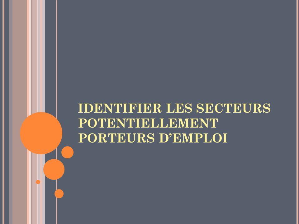 IDENTIFIER LES SECTEURS POTENTIELLEMENT PORTEURS DEMPLOI
