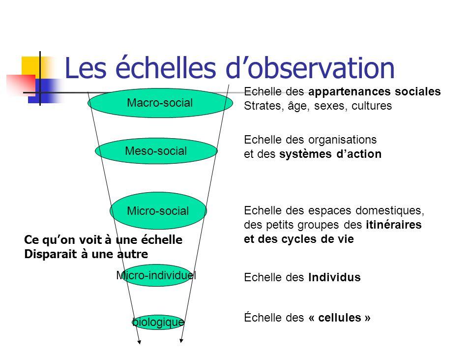 Les échelles dobservation Micro-individuel Micro-social Meso-social Macro-social Echelle des Individus Echelle des appartenances sociales Strates, âge