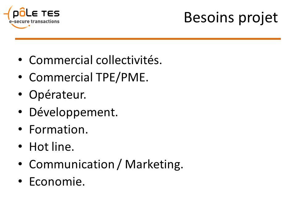Besoins projet Commercial collectivités. Commercial TPE/PME. Opérateur. Développement. Formation. Hot line. Communication / Marketing. Economie.