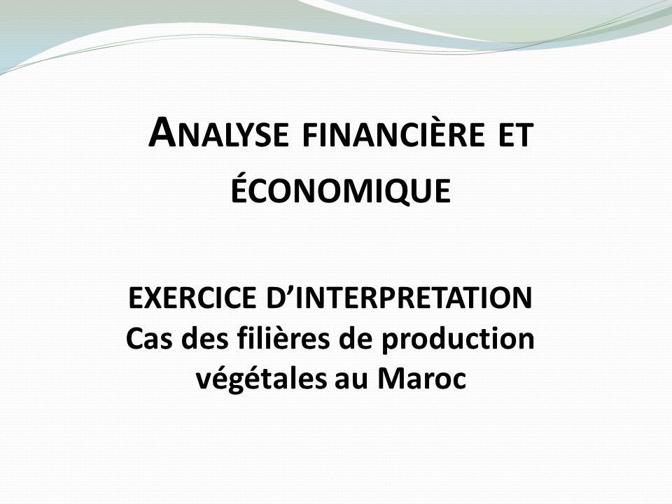 A NALYSE FINANCIÈRE ET ÉCONOMIQUE EXERCICE DINTERPRETATION Cas des filières de production végétales au Maroc