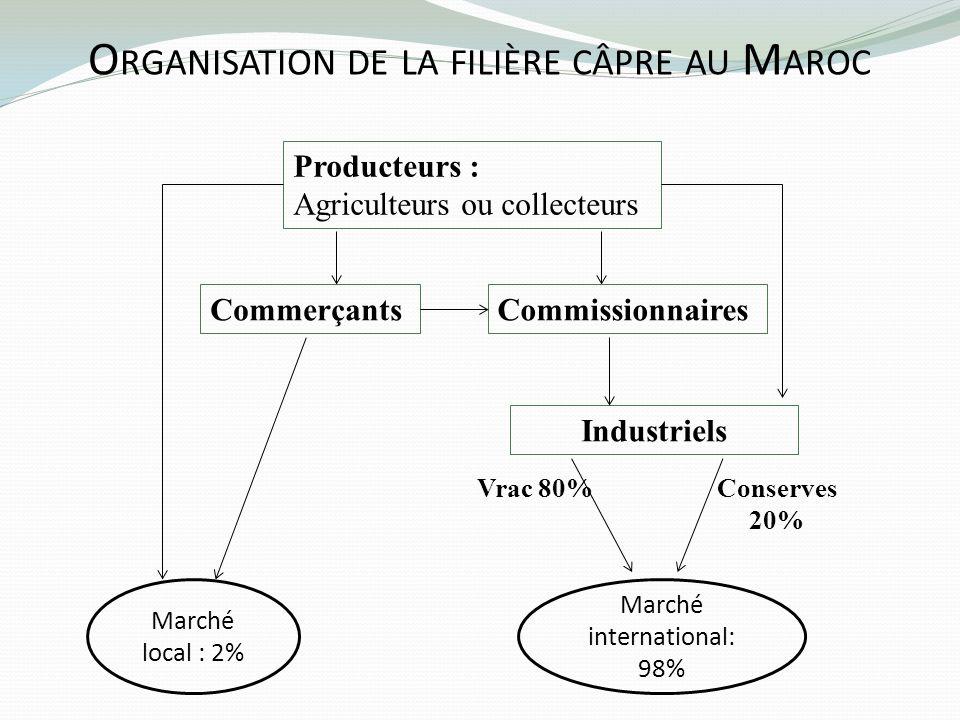 O RGANISATION DE LA FILIÈRE CÂPRE AU M AROC Producteurs : Agriculteurs ou collecteurs Commerçants Industriels Marché local : 2% Marché international: