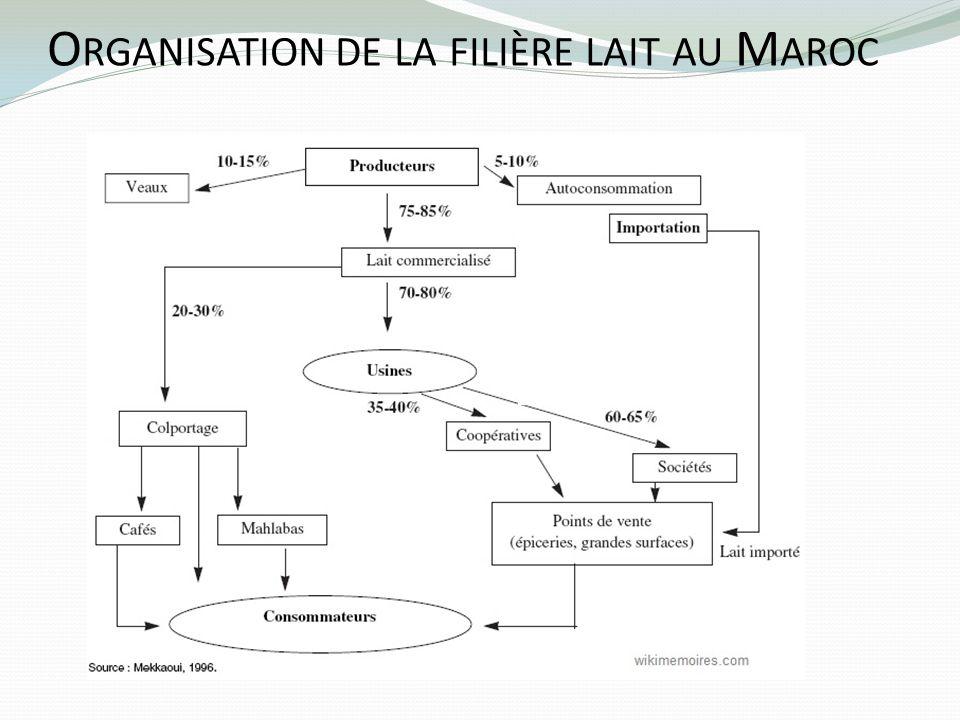 O RGANISATION DE LA FILIÈRE LAIT AU M AROC