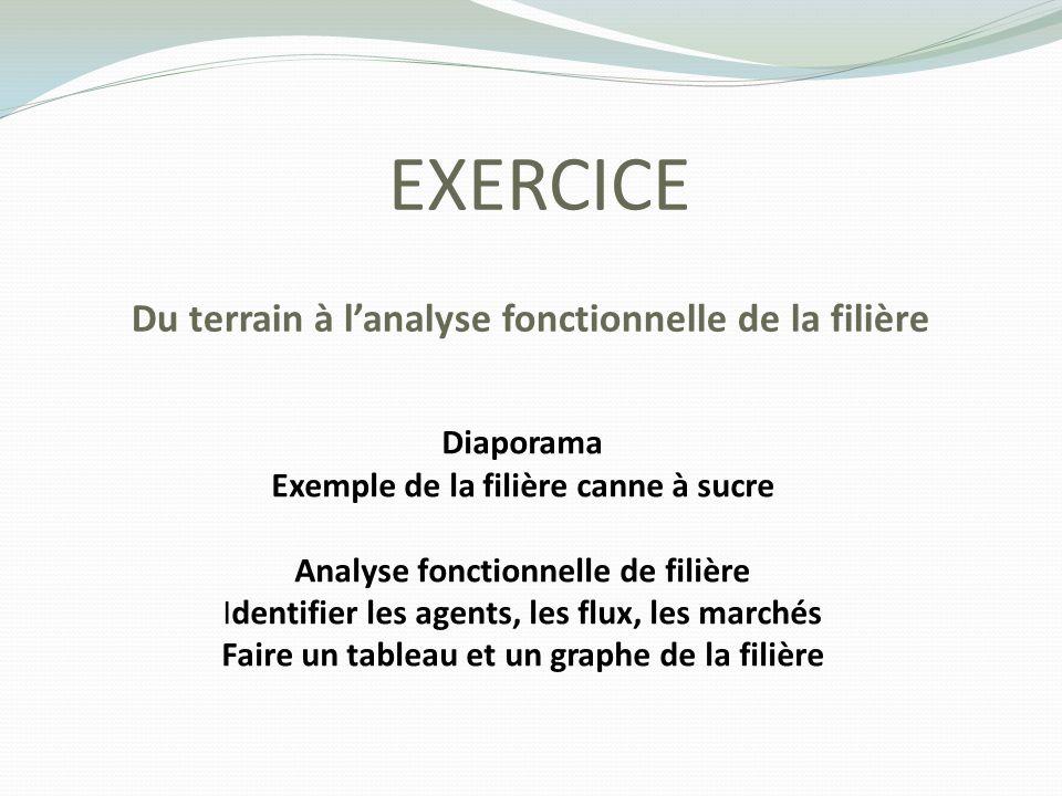 EXERCICE Du terrain à lanalyse fonctionnelle de la filière Diaporama Exemple de la filière canne à sucre Analyse fonctionnelle de filière Identifier l