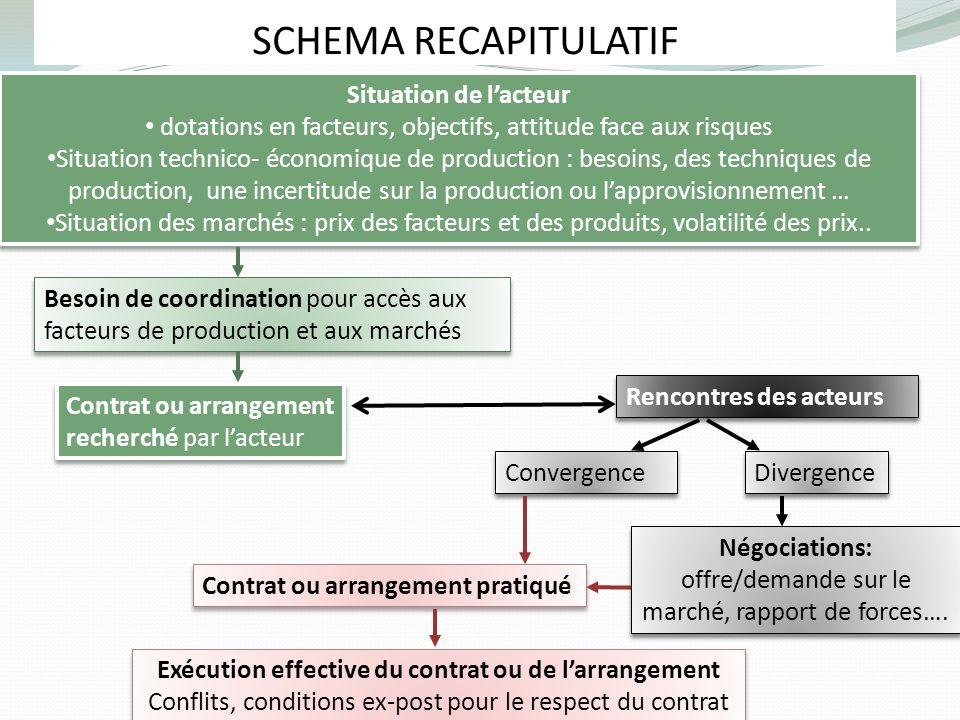 SCHEMA RECAPITULATIF Besoin de coordination pour accès aux facteurs de production et aux marchés Situation de lacteur dotations en facteurs, objectifs