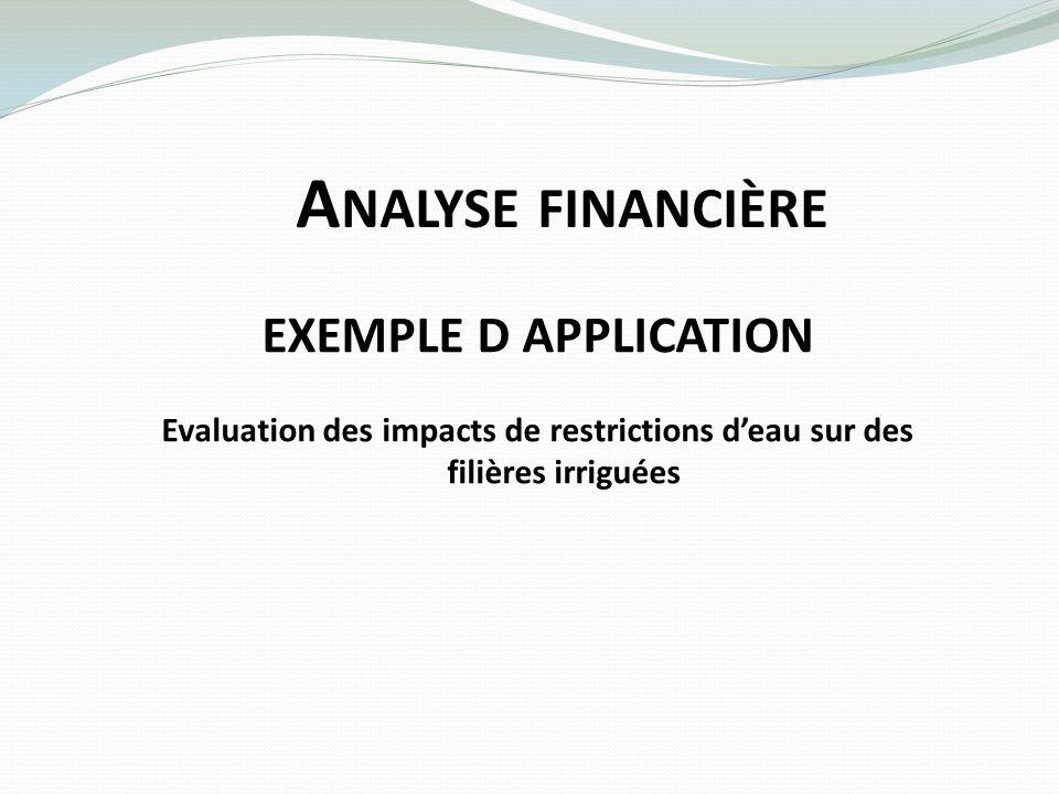 A NALYSE FINANCIÈRE EXEMPLE D APPLICATION Evaluation des impacts de restrictions deau sur des filières irriguées