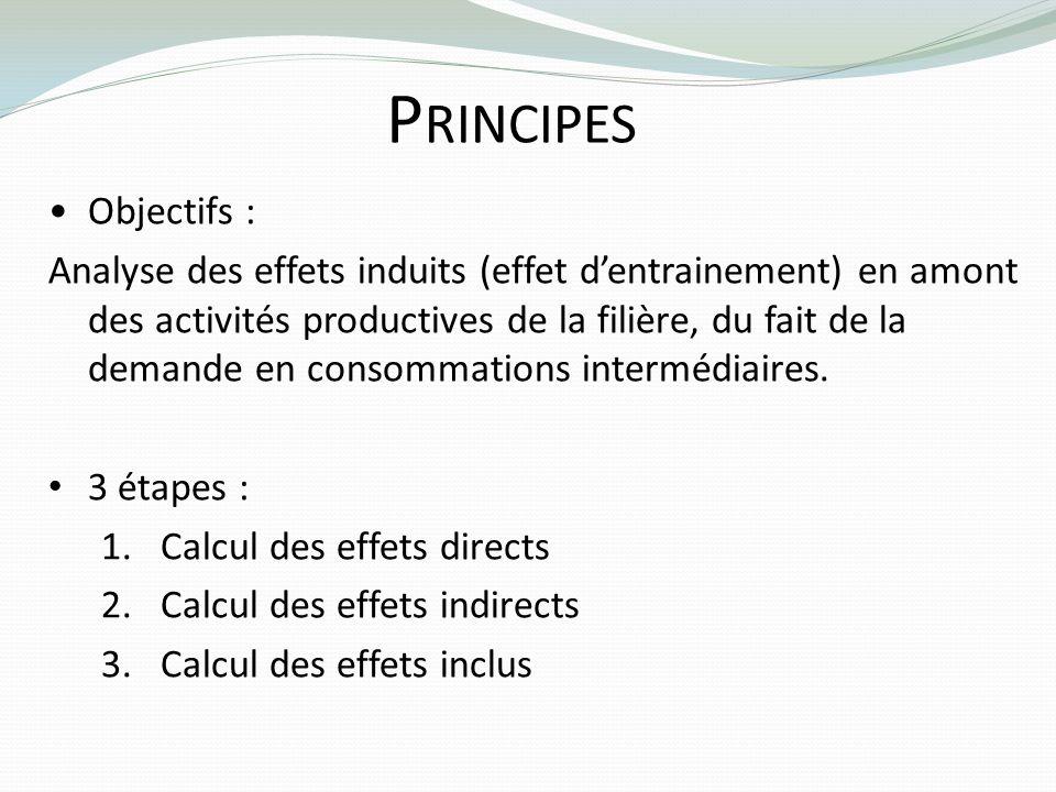 P RINCIPES Objectifs : Analyse des effets induits (effet dentrainement) en amont des activités productives de la filière, du fait de la demande en con
