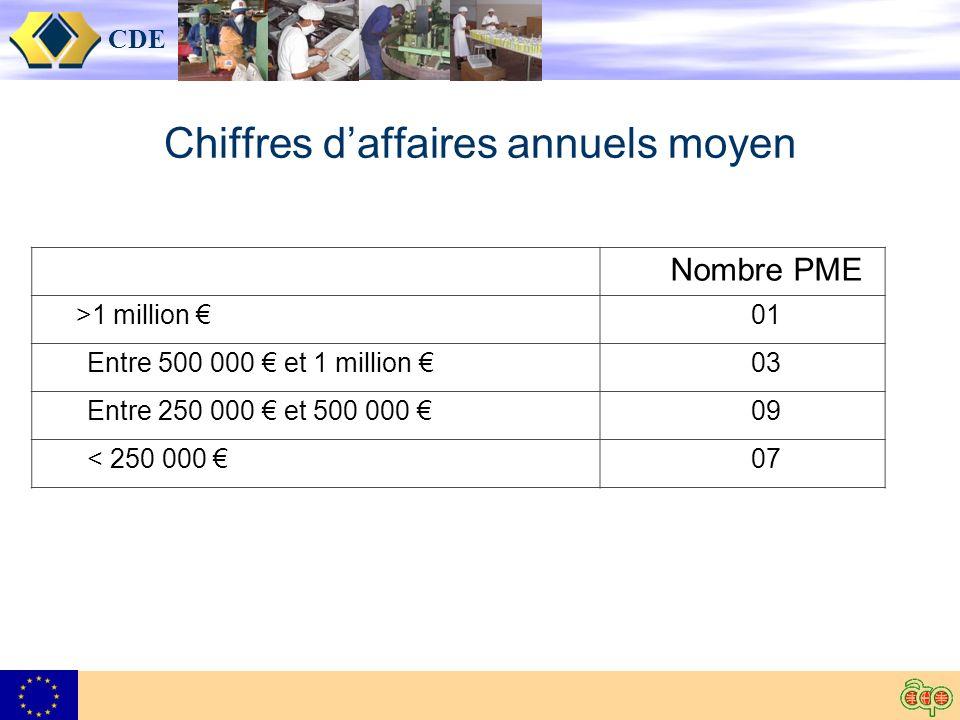 CDE Chiffres daffaires annuels moyen Nombre PME >1 million 01 Entre 500 000 et 1 million 03 Entre 250 000 et 500 000 09 < 250 000 07