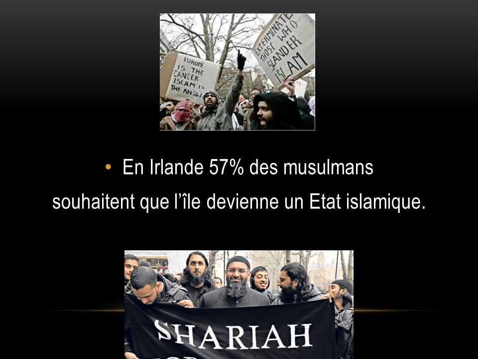 A Amsterdam il y plus de musulmans que de catholiques ou de protestants.