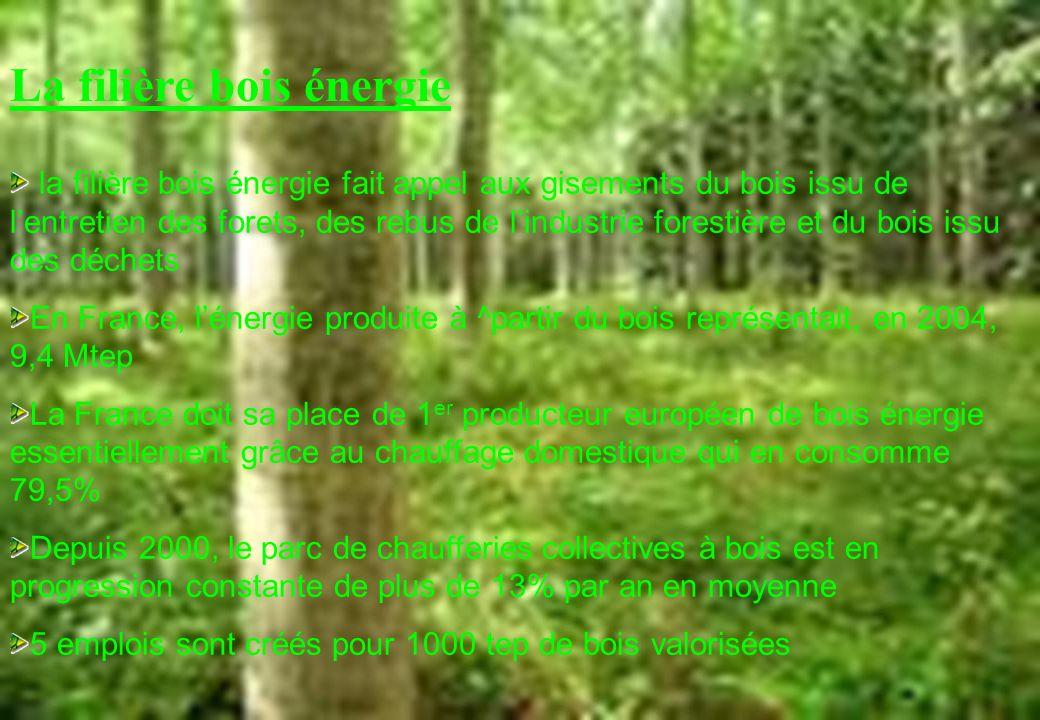 La filière bois énergie la filière bois énergie fait appel aux gisements du bois issu de lentretien des forets, des rebus de lindustrie forestière et