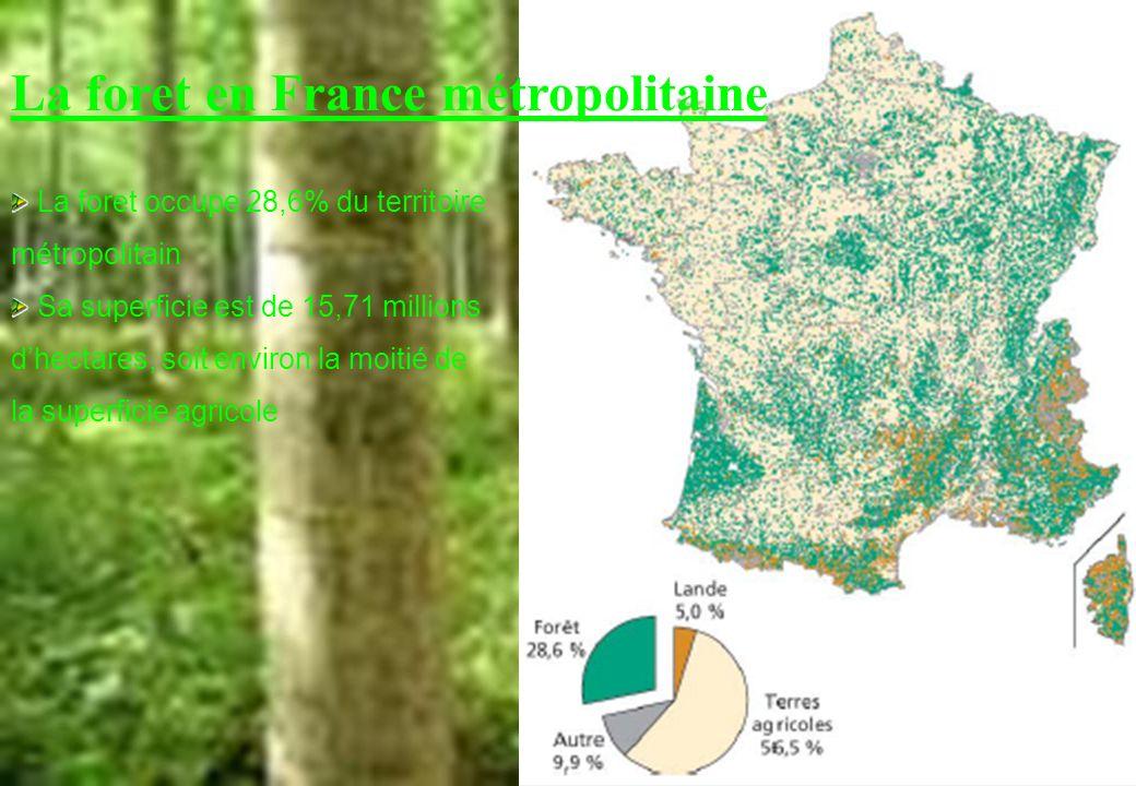 La foret occupe 28,6% du territoire métropolitain Sa superficie est de 15,71 millions dhectares, soit environ la moitié de la superficie agricole La f