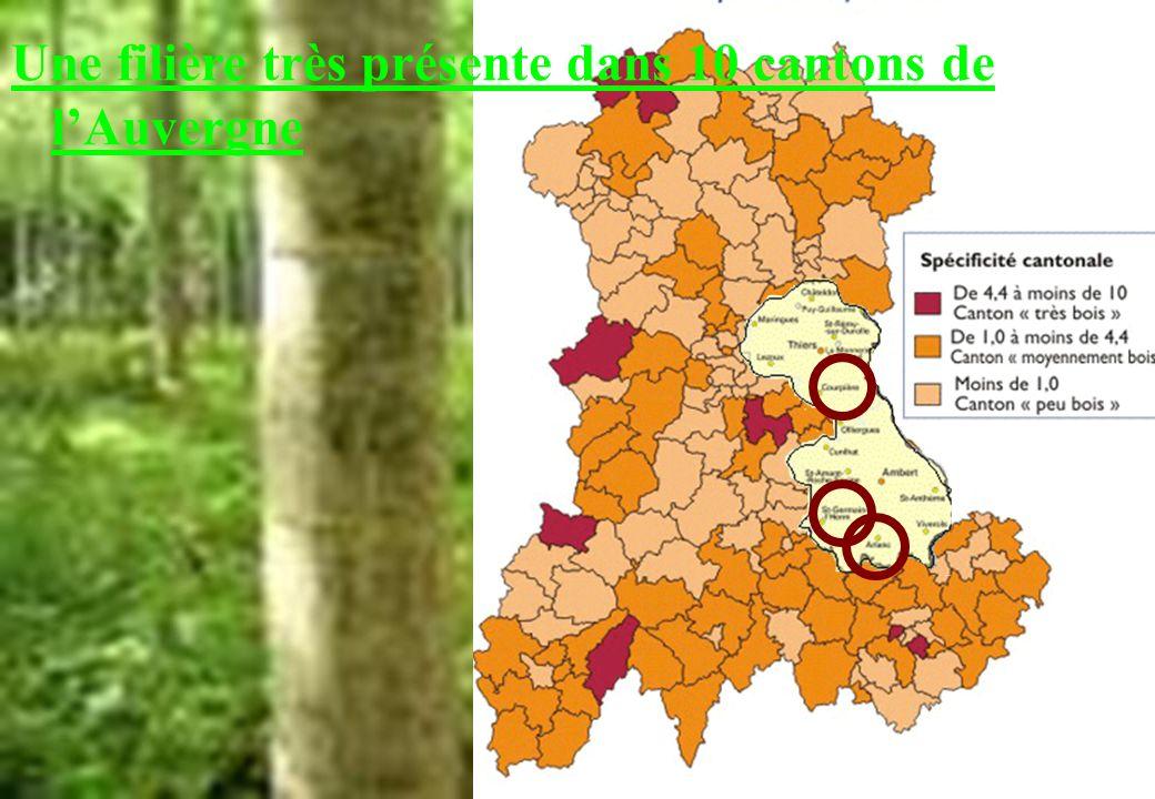 Une filière très présente dans 10 cantons de lAuvergne