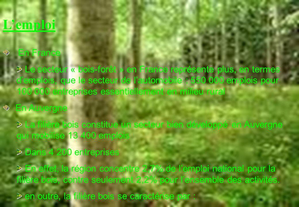 Lemploi En France Le secteur « bois-forêt » en France représente plus, en termes demplois, que le secteur de lautomobile : 550 000 emplois pour 100 00