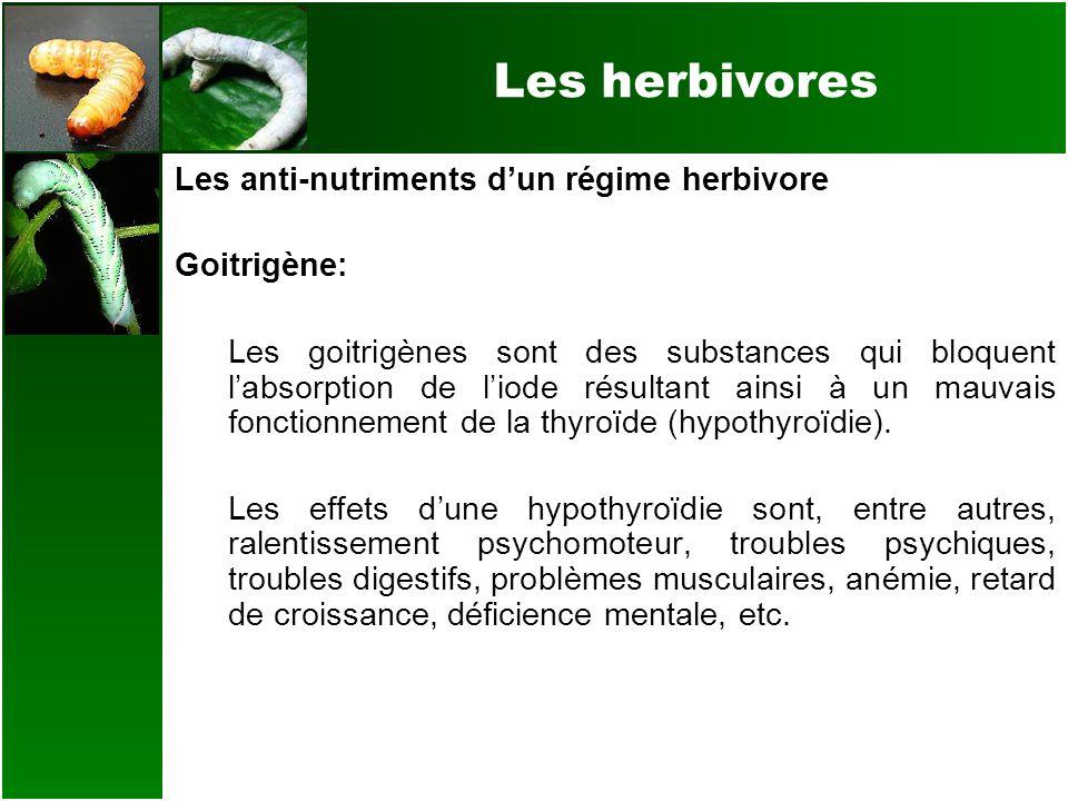 Les herbivores Les anti-nutriments dun régime herbivore Goitrigène: Les goitrigènes sont des substances qui bloquent labsorption de liode résultant ai