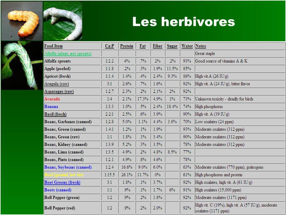 Les herbivores
