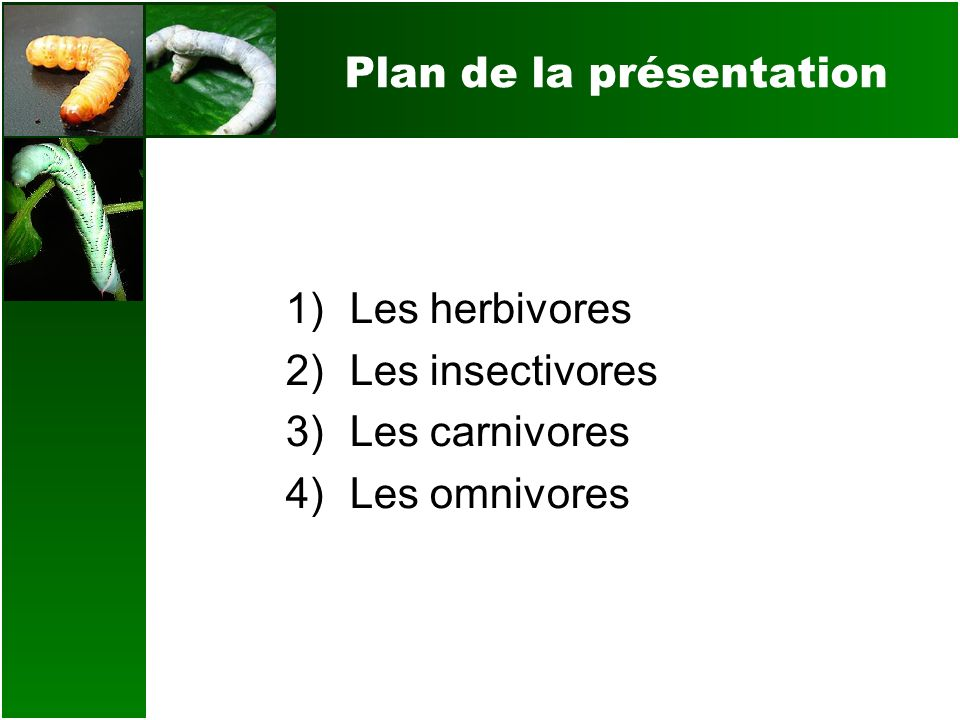 Les insectivores Les anti-nutriments dun régime insectivore Aucun anti-nutriment majeur ne sapplique directement à une diète insectivore selon les études actuelles.