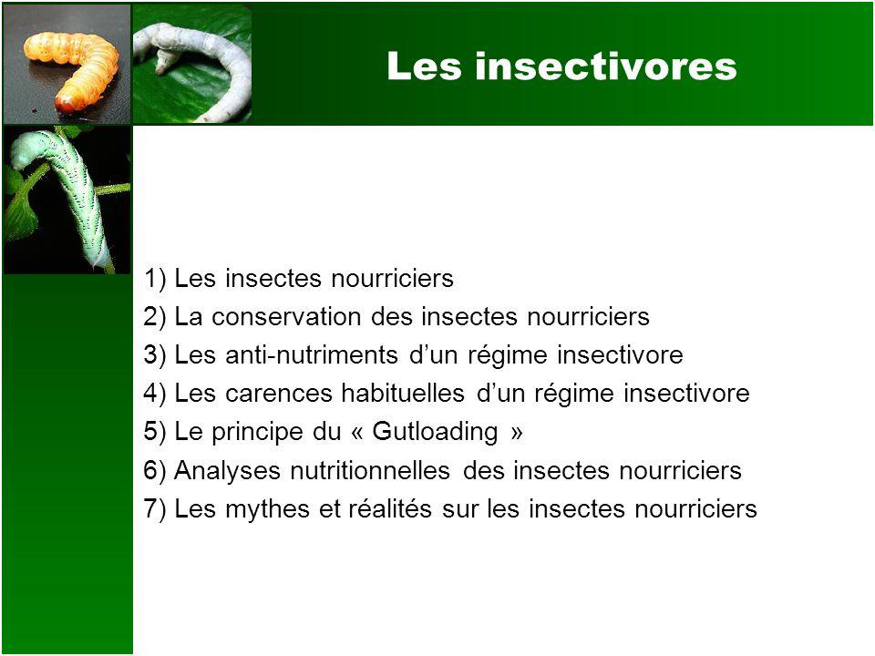 Les insectivores 1) Les insectes nourriciers 2) La conservation des insectes nourriciers 3) Les anti-nutriments dun régime insectivore 4) Les carences