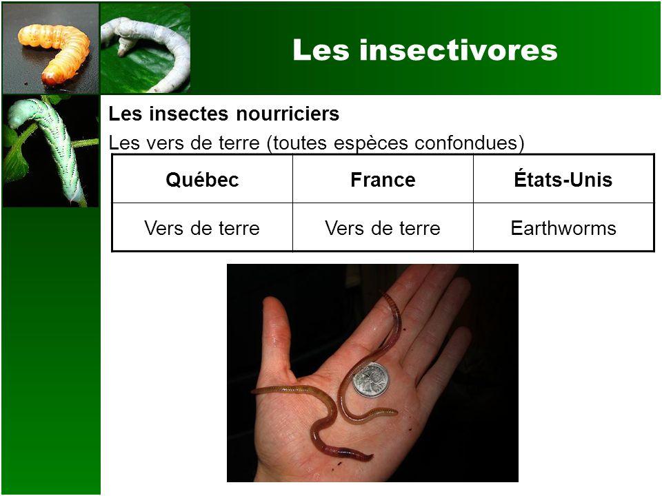 Les insectivores Les insectes nourriciers Les vers de terre (toutes espèces confondues) QuébecFranceÉtats-Unis Vers de terre Earthworms