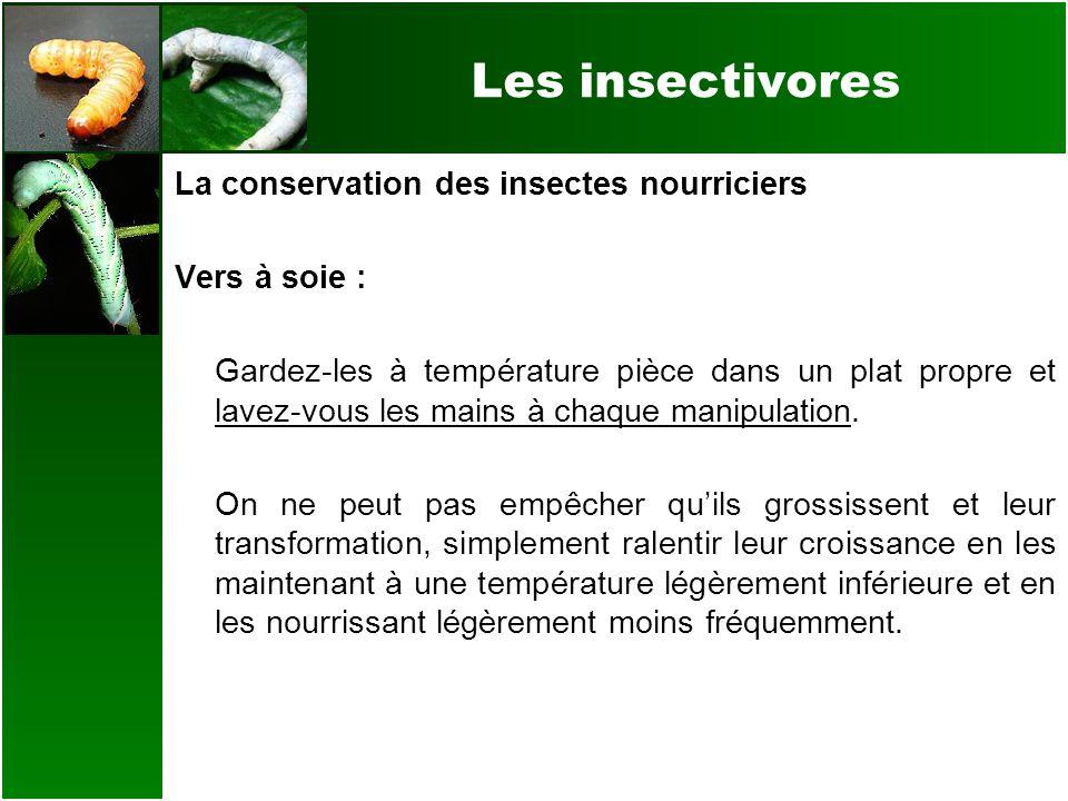 Les insectivores La conservation des insectes nourriciers Vers à soie : Gardez-les à température pièce dans un plat propre et lavez-vous les mains à c