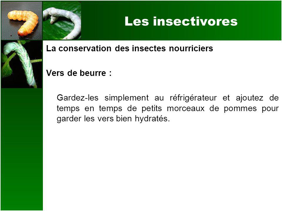 Les insectivores La conservation des insectes nourriciers Vers de beurre : Gardez-les simplement au réfrigérateur et ajoutez de temps en temps de peti