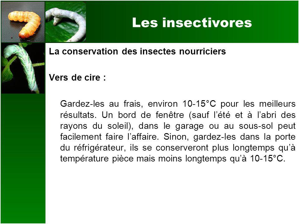 Les insectivores La conservation des insectes nourriciers Vers de cire : Gardez-les au frais, environ 10-15°C pour les meilleurs résultats. Un bord de
