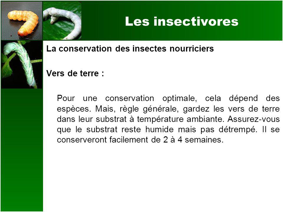 Les insectivores La conservation des insectes nourriciers Vers de terre : Pour une conservation optimale, cela dépend des espèces. Mais, règle général