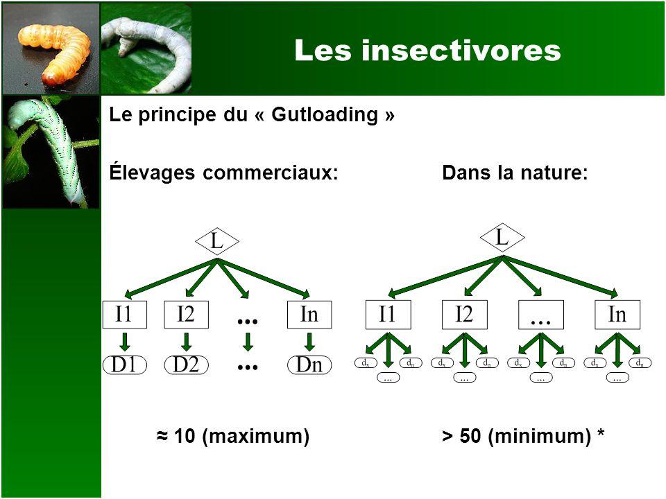 Les insectivores Le principe du « Gutloading » Élevages commerciaux:Dans la nature: 10 (maximum)> 50 (minimum) *