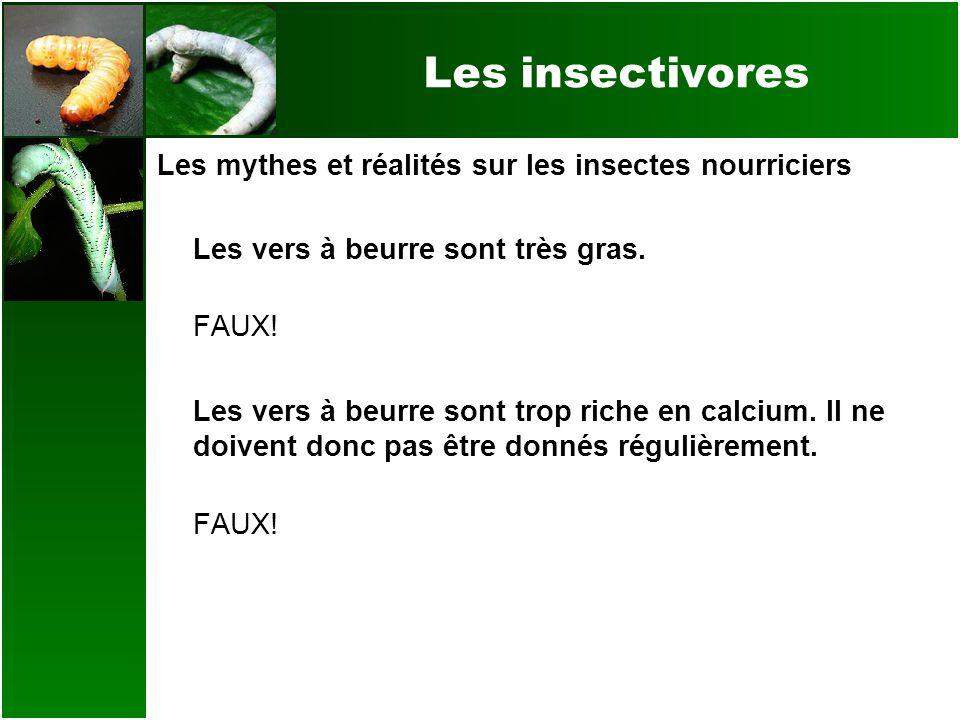 Les insectivores Les mythes et réalités sur les insectes nourriciers Les vers à beurre sont très gras. FAUX! Les vers à beurre sont trop riche en calc