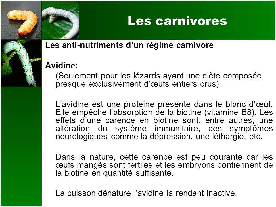 Les carnivores Les anti-nutriments dun régime carnivore Avidine: (Seulement pour les lézards ayant une diète composée presque exclusivement dœufs enti