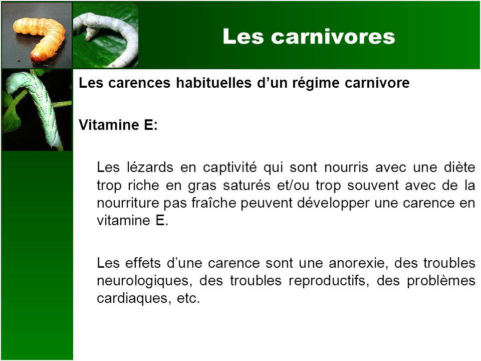 Les carnivores Les carences habituelles dun régime carnivore Vitamine E: Les lézards en captivité qui sont nourris avec une diète trop riche en gras s