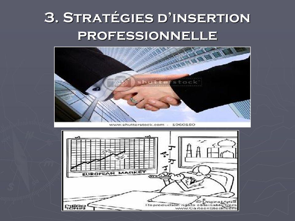 3. Stratégies dinsertion professionnelle