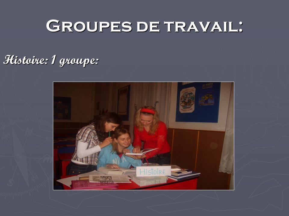 Groupes de travail: Histoire: 1 groupe: