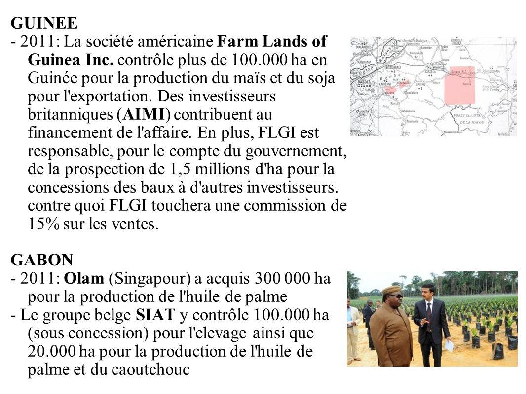 GRAIN 10/2011 GUINEE - 2011: La société américaine Farm Lands of Guinea Inc. contrôle plus de 100.000 ha en Guinée pour la production du maïs et du so