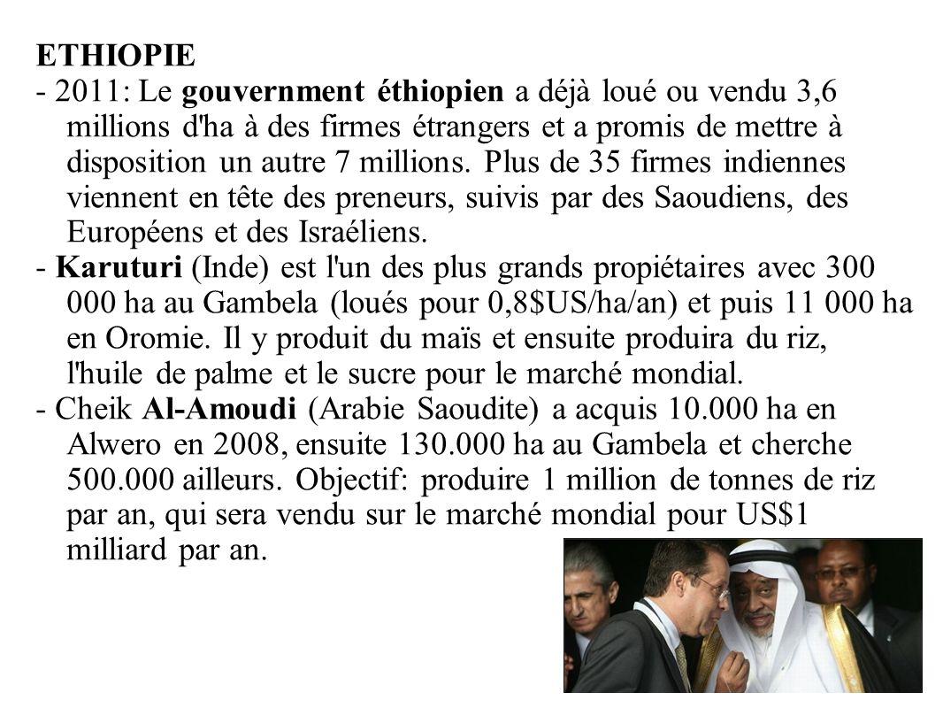 GRAIN 10/2011 ETHIOPIE - 2011: Le gouvernment éthiopien a déjà loué ou vendu 3,6 millions d'ha à des firmes étrangers et a promis de mettre à disposit