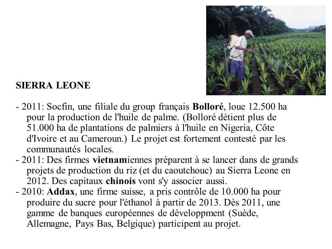 GRAIN 10/2011 SIERRA LEONE - 2011: Socfin, une filiale du group français Bolloré, loue 12.500 ha pour la production de l'huile de palme. (Bolloré déti