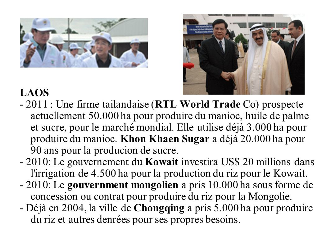 GRAIN 10/2011 LAOS - 2011 : Une firme tailandaise (RTL World Trade Co) prospecte actuellement 50.000 ha pour produire du manioc, huile de palme et suc