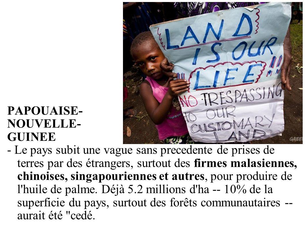 GRAIN 10/2011 PAPOUAISE- NOUVELLE- GUINEE - Le pays subit une vague sans precedente de prises de terres par des étrangers, surtout des firmes malasien