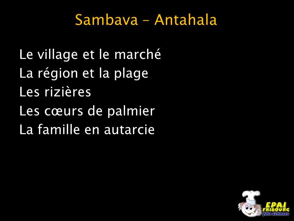 Sambava – Antahala Le village et le marché La région et la plage Les rizières Les cœurs de palmier La famille en autarcie
