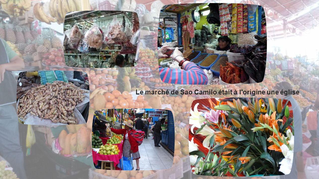 Aréquipa le marché Au marché Sao Camilo, on trouve de tout: des fleurs, du beurre, des fruits, des restaurants, des cocktails de fruits … REMARQUE : P